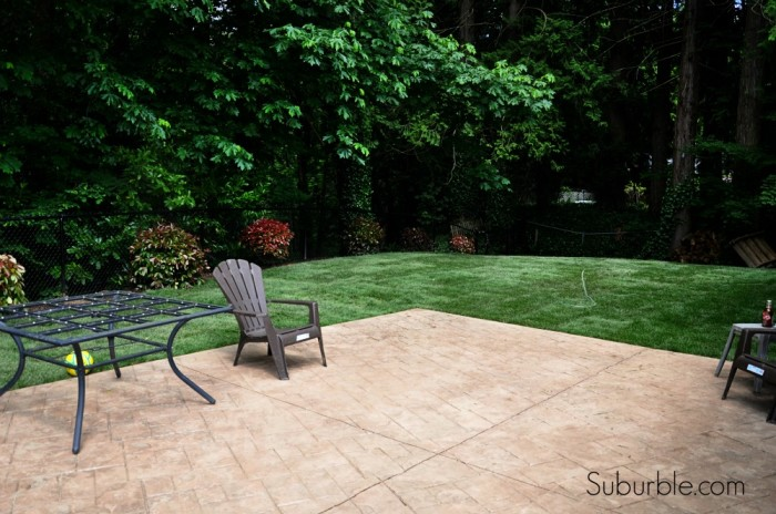 Evolution of a backyard 4 - Suburble