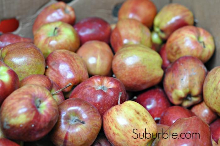 Applesauce 1 - Suburble