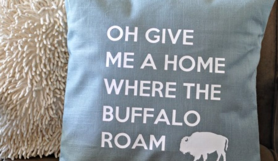 Home On The Range: An Accent Pillow (with free cut file!)