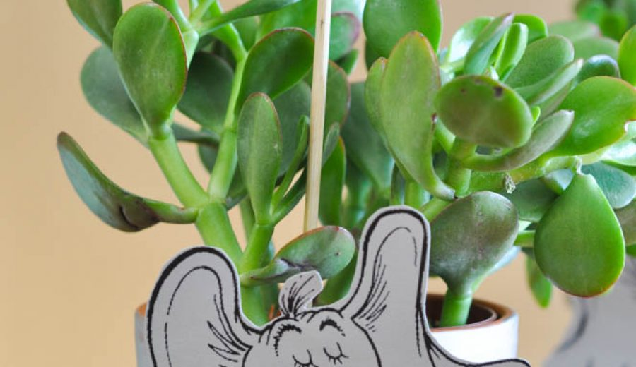 Dr. Seuss Is In The Garden – Horton Flower Pots