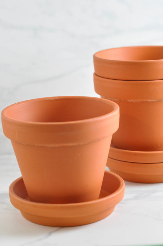 Terracotta pots  - Suburble.com (1 of 1)