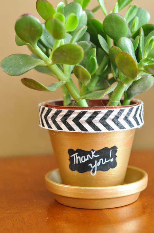Thank you - Terracotta pot  - Suburble.com (1 of 1)