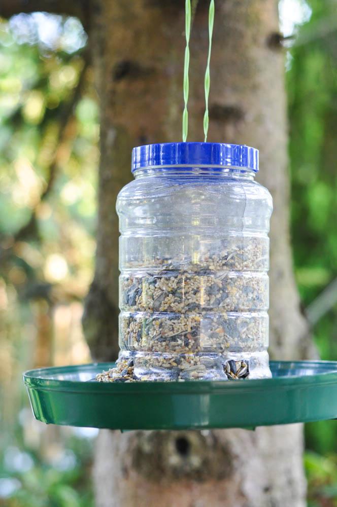 An upcycled bird feeder suburble for Upcycled bird feeder