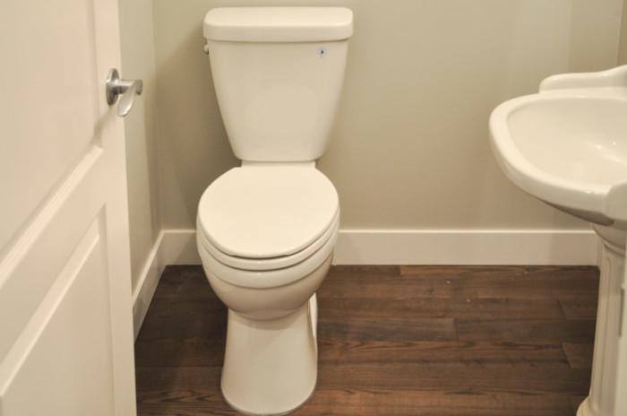 Delta Prelude Toilet- Suburble.com-1
