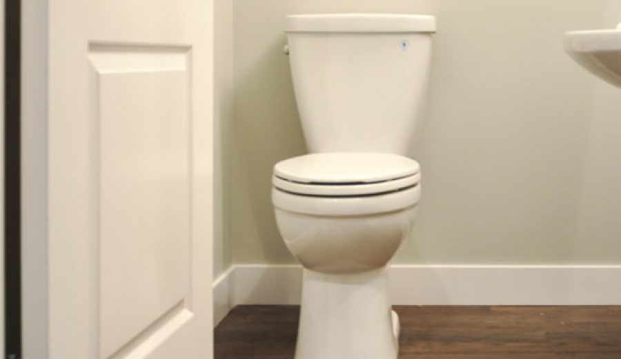How to Shop For A Toilet (It's more than good looks…)