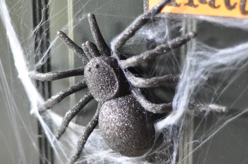 Despite the flashy colours of some of his counterparts I like the big black glittery spiders. They are ALMOST the most menacing of the door decor gang. & A Spooky Spiderweb Door (using magnets!) - Suburble