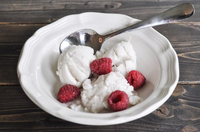 Coconut Milk Ice Cream-2