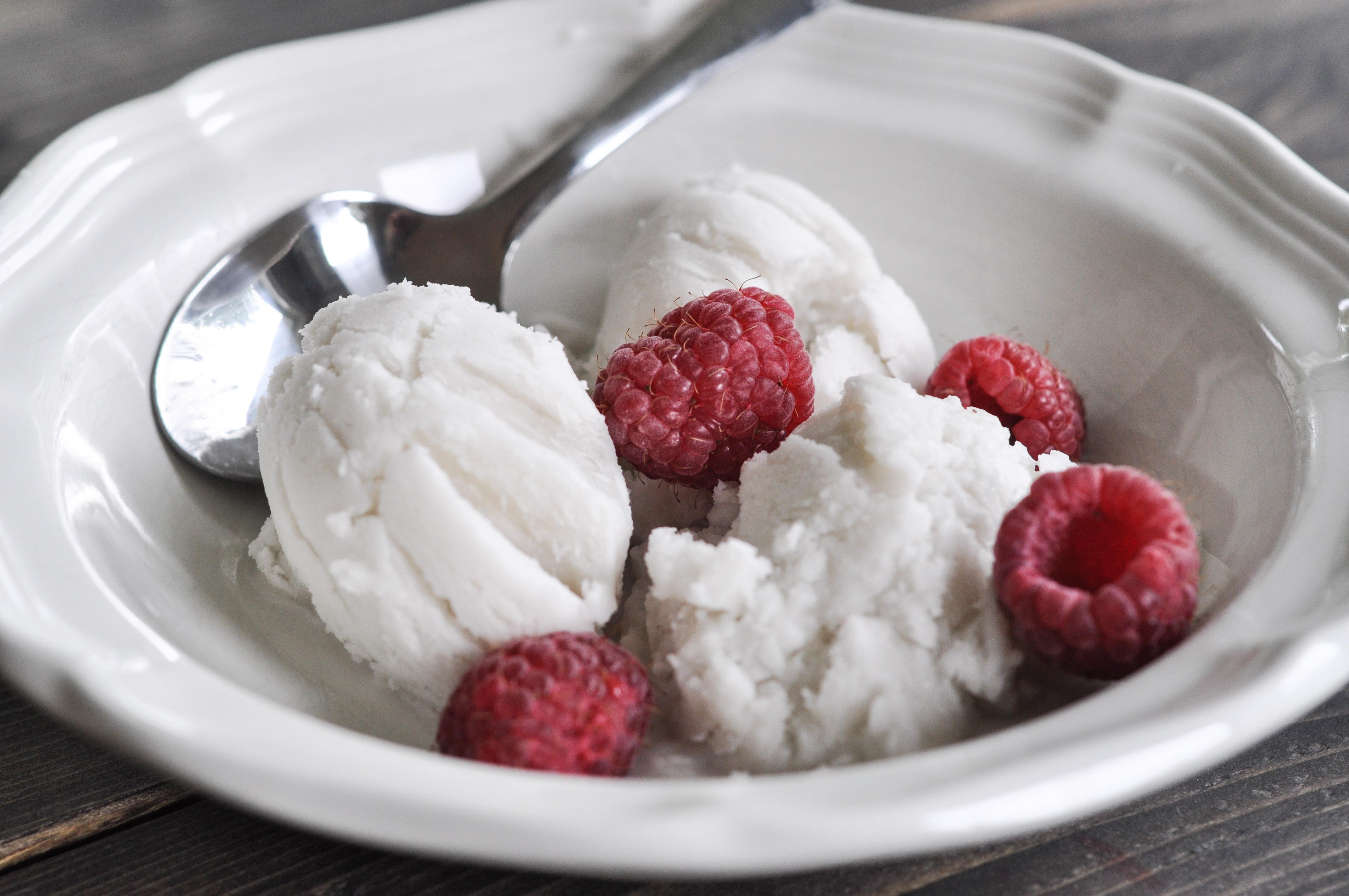 Food Processor Ice Cream With Milk