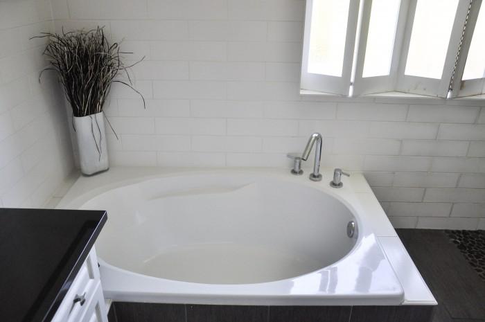 Master Bathroom - The Beginning-1