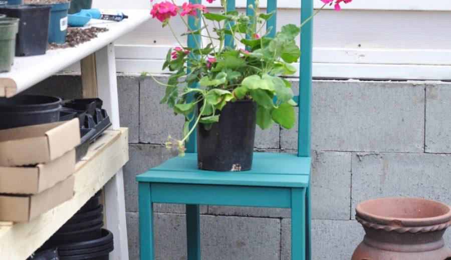 Adding a Pop of Colour With Renfrew Blue