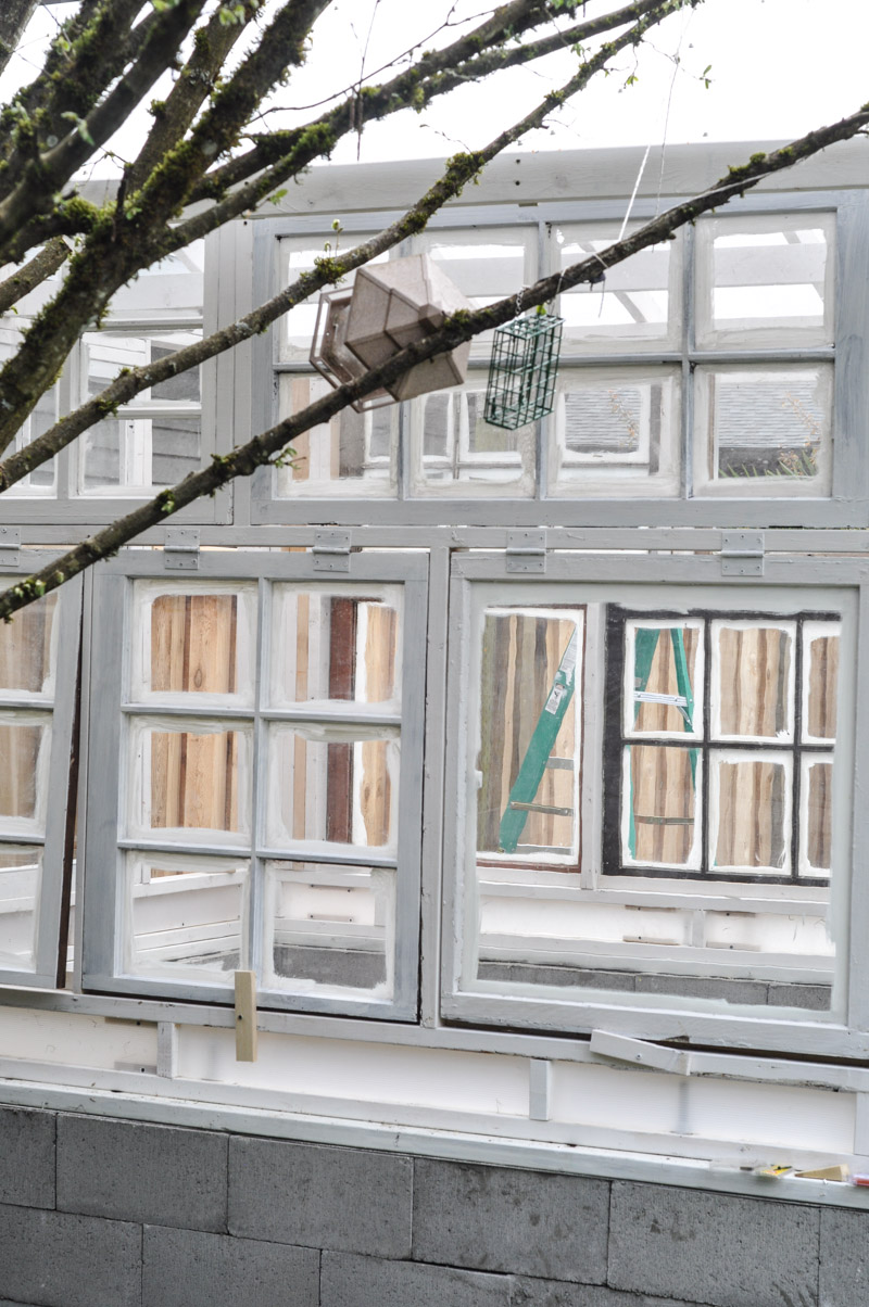 The Greenhouse Project- Framing Windows-2-2