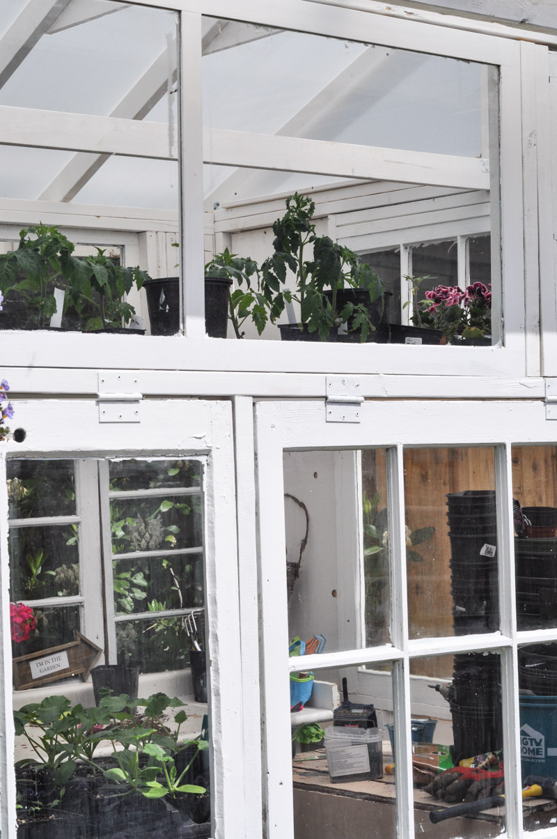 The Greenhouse Project- How To Build A Greenhouse From Vintage Windows-10
