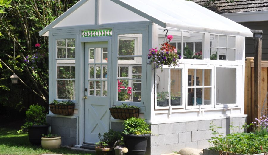 The Greenhouse Project: She's Done!