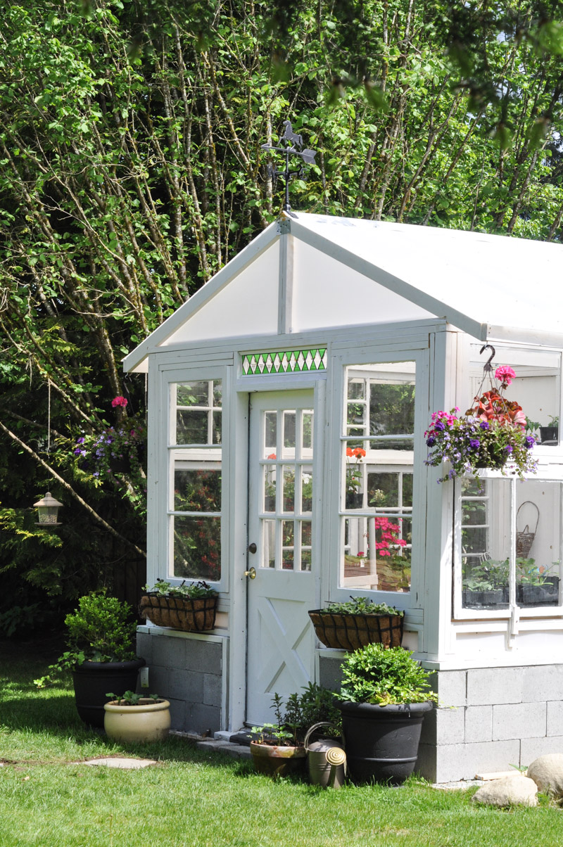 The Greenhouse Project- How To Build A Greenhouse From Vintage Windows-7