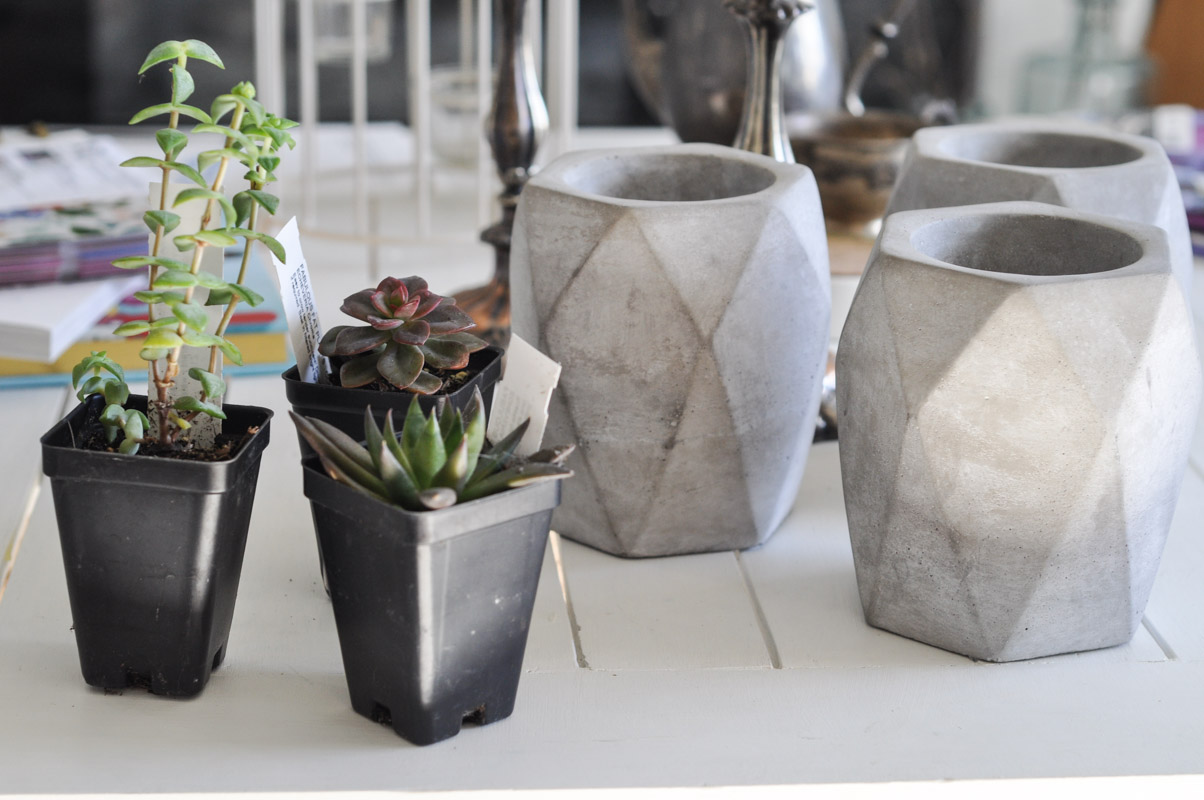 Gold Dipped Geometric Planters-1