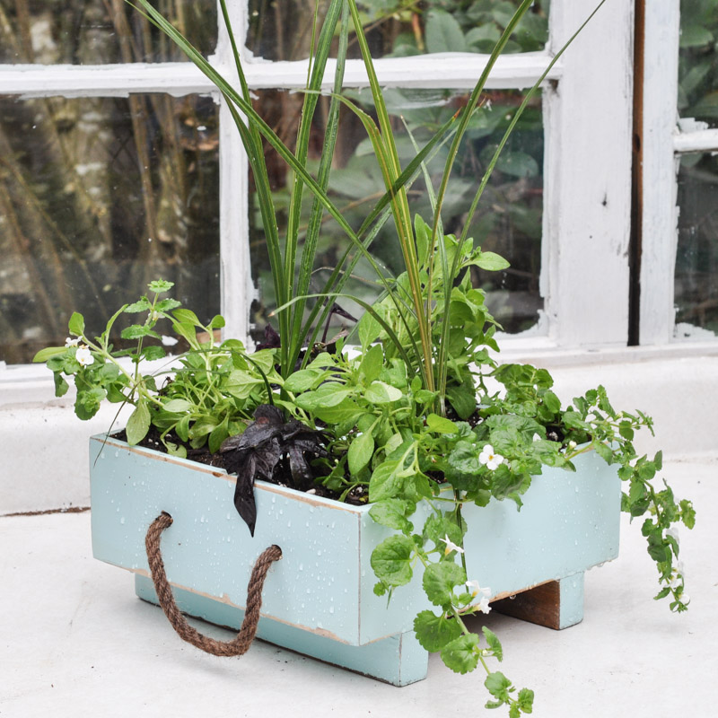 a milk crate turned planter getting spring started the garden - Milk Crate Garden
