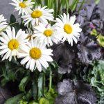 An Easy Fall Planter Tutorial